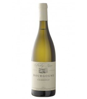 "Bourgogne Chardonnay ""Saint Martin"" 2017 - Bachey-Legros"