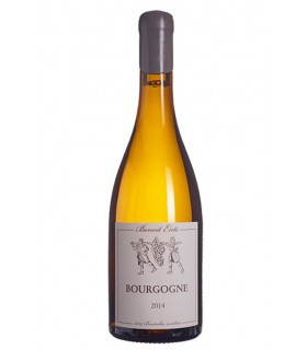Bourgogne Chardonnay 2019 - Benoit Ente